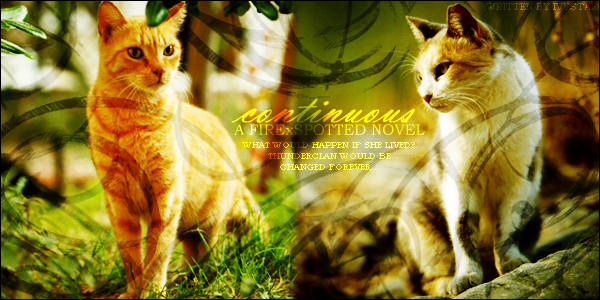 Spottedleaf, the greatest medicine cat of all time, and Firestar,