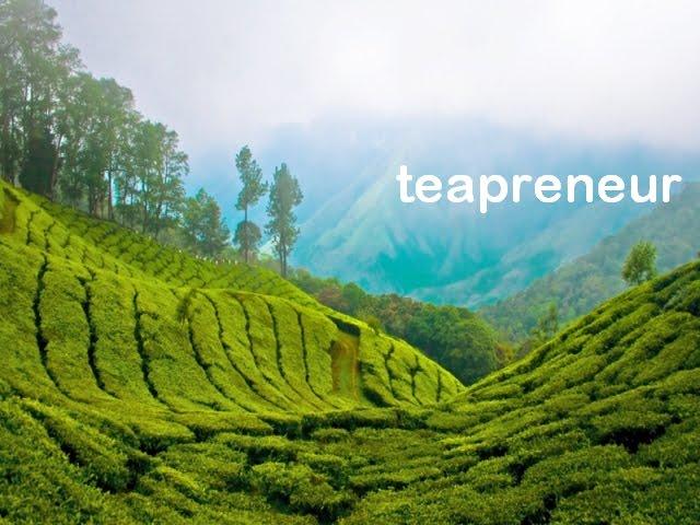 Teapreneur