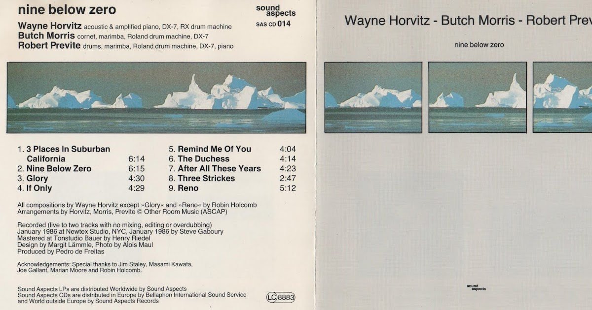 Wayne Horvitz Butch Morris Robert Previte Nine Below Zero