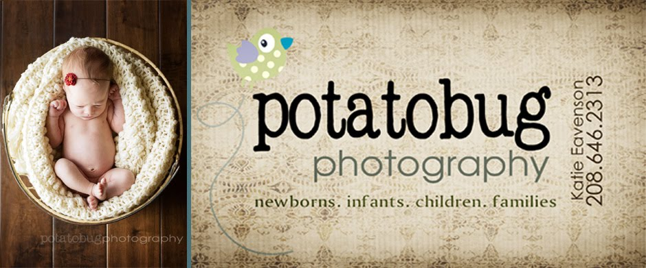 potatobug photography the blog