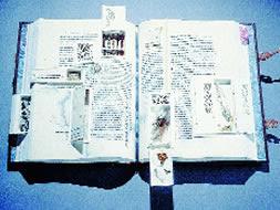 ¿Cuán ecológicos son los libros digitales?