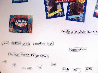 refrigerator magnets spelling silly things