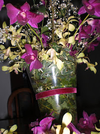 Orchids from Tim