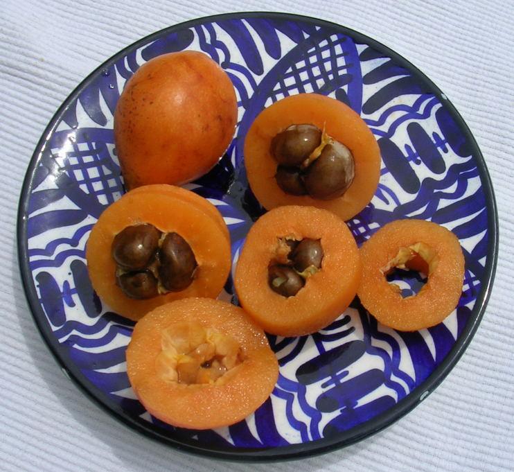 bedste tørre frugter til sædceller