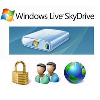 pepua seguridad skydrive upload backaup copia de respaldo