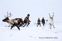 viktige dyr i samisk kultur