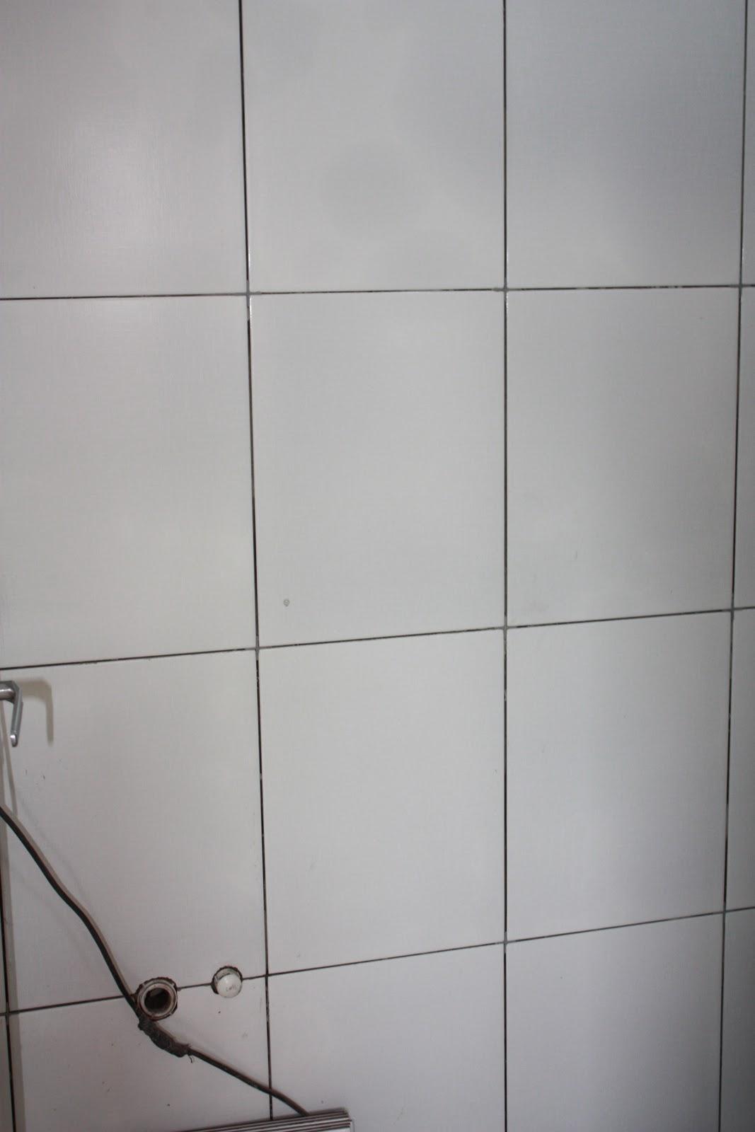 Nosso apê : E começa a reforma no banheiro  #5A504D 1067 1600