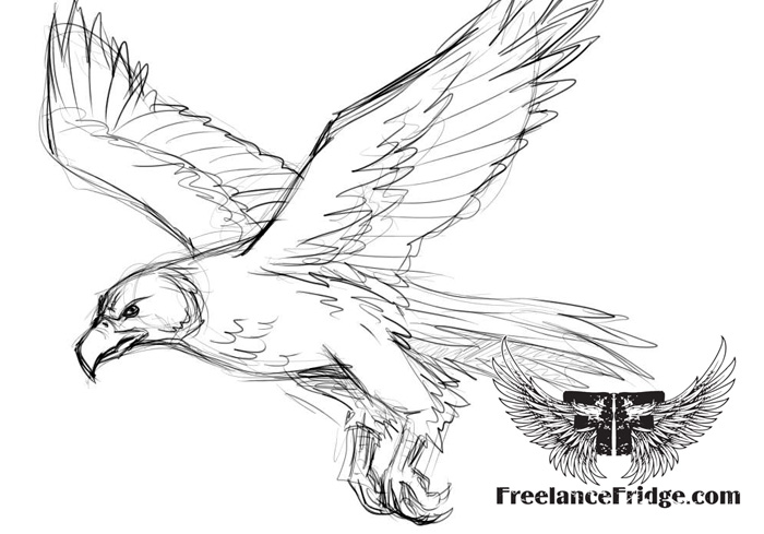 free coloring pages storm hawks - photo#2