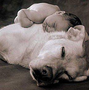 Baby mit Hund Hund+u+Baby