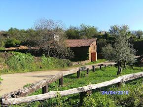 Museo del Olivo de Casar de Palomero