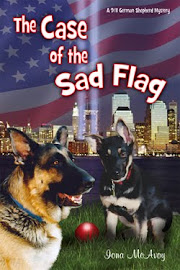 THE CASE OF THE SAD FLAG