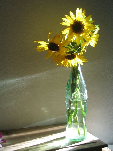 Creator's Joy: Sunflower Still Life Drawing Lesson