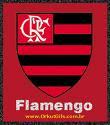 Flamengo tricampeao no Rio de janeiro