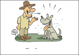 Variedades em Palavras: O caipira e as pulgas. Humor.