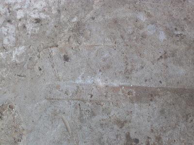concrete texture. texture concrete