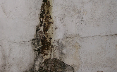 texture wall plaster