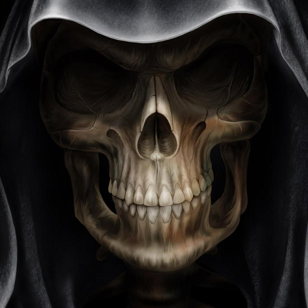 scunnert nation  Skull Wallpaper For Home