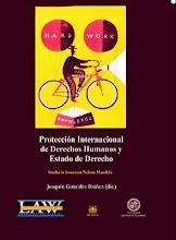 Protección Internacional de los DDHH y Estado de Derecho