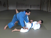 bjj blue belt requirements pdf