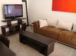 Flat Panel TV in Modern Living Room