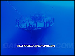 Seatiger Shipwreck