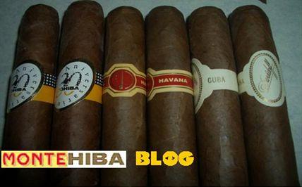Montehiba Blog