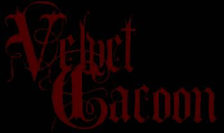 Velvet Cacoon New album 2011