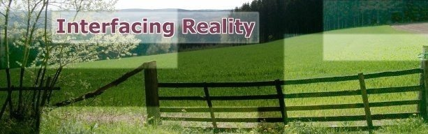 Interfacing Reality