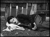 Chaplin y los perros