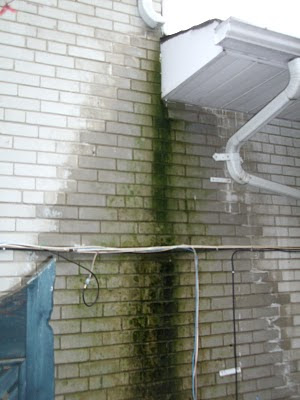 Home badly in need of new eavestroughs green mold on wall Major downspout leak