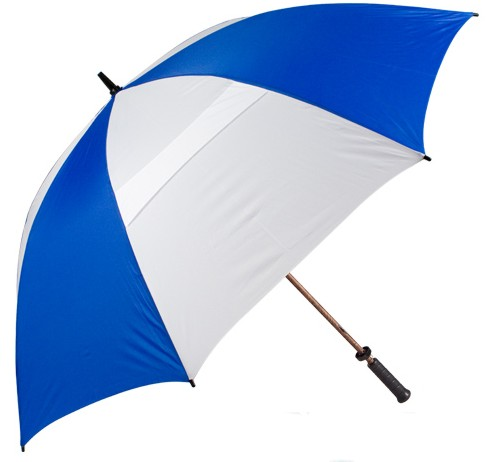 Umbrella Companies Guide, IT Contractor(s) News/Advice, Umbrella