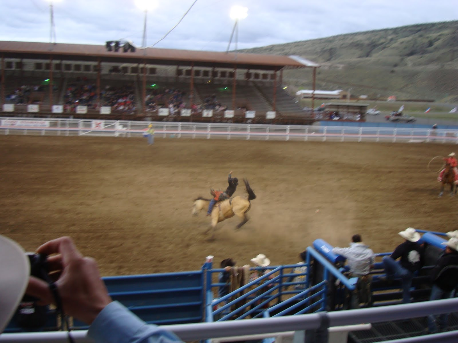 Chris and Jenn's Blog: Lower Falls, Norris, Cody Rodeo, and WOLVES
