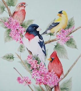 alphabet poster wtih birds in watercolor by Yong Chen