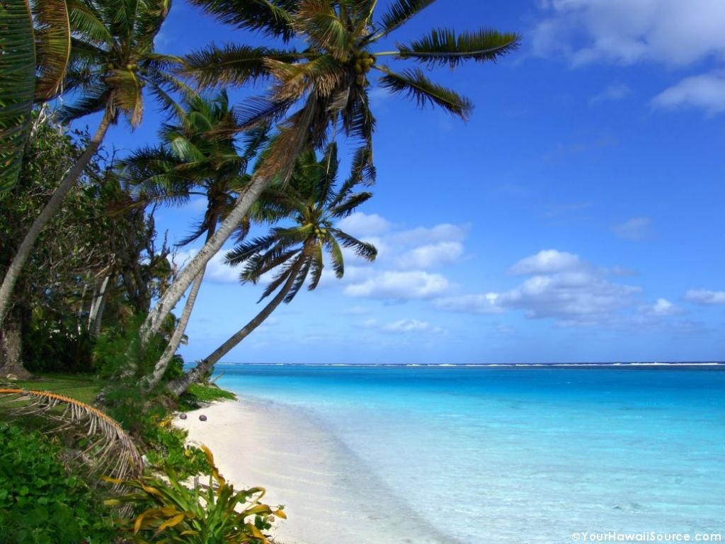 http://2.bp.blogspot.com/_J1mmjHJmbKU/THe9bZcXRBI/AAAAAAAAAAU/I-1BiyqHDBM/s1600/hawaiian_beach_7.jpg