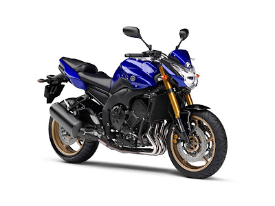 2010 Yamaha FZ8 Photo