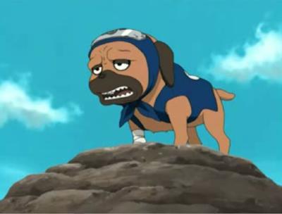 Pakun Naruto Anime