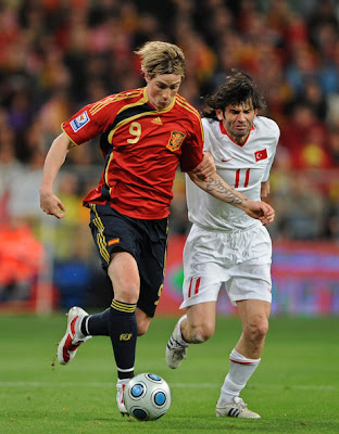 Fernando Torres World Cup 2010 Football Picture