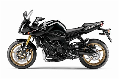 2010 Yamaha FZ1 Motorcycle