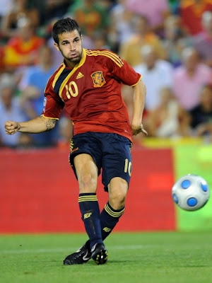 Cesc Fabregas World Cup 2010 Big Poster