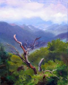 Blue Ridge Tree