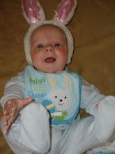 Baby Bunny!