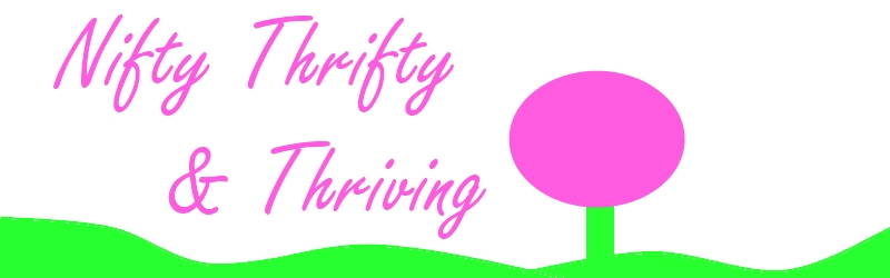 Nifty Thrifty &amp; Thriving