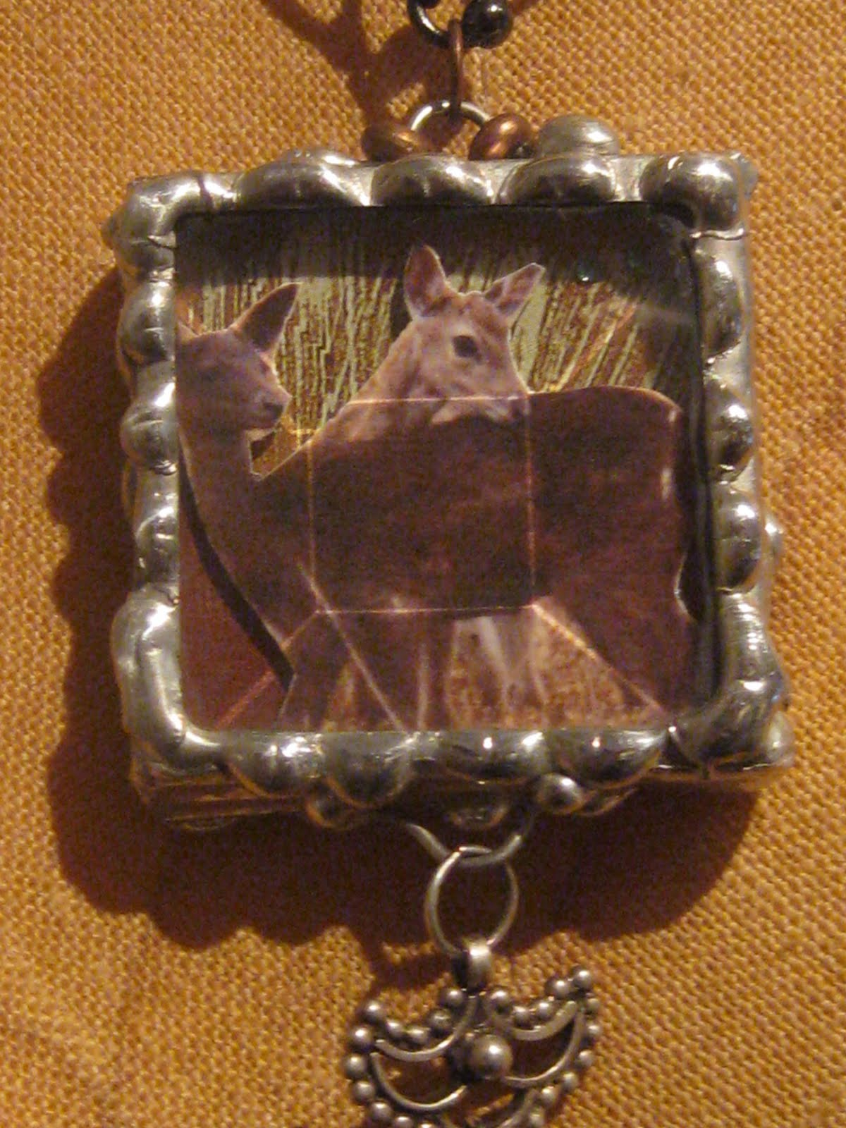 stephen d farmer animal spirit guide raccoon