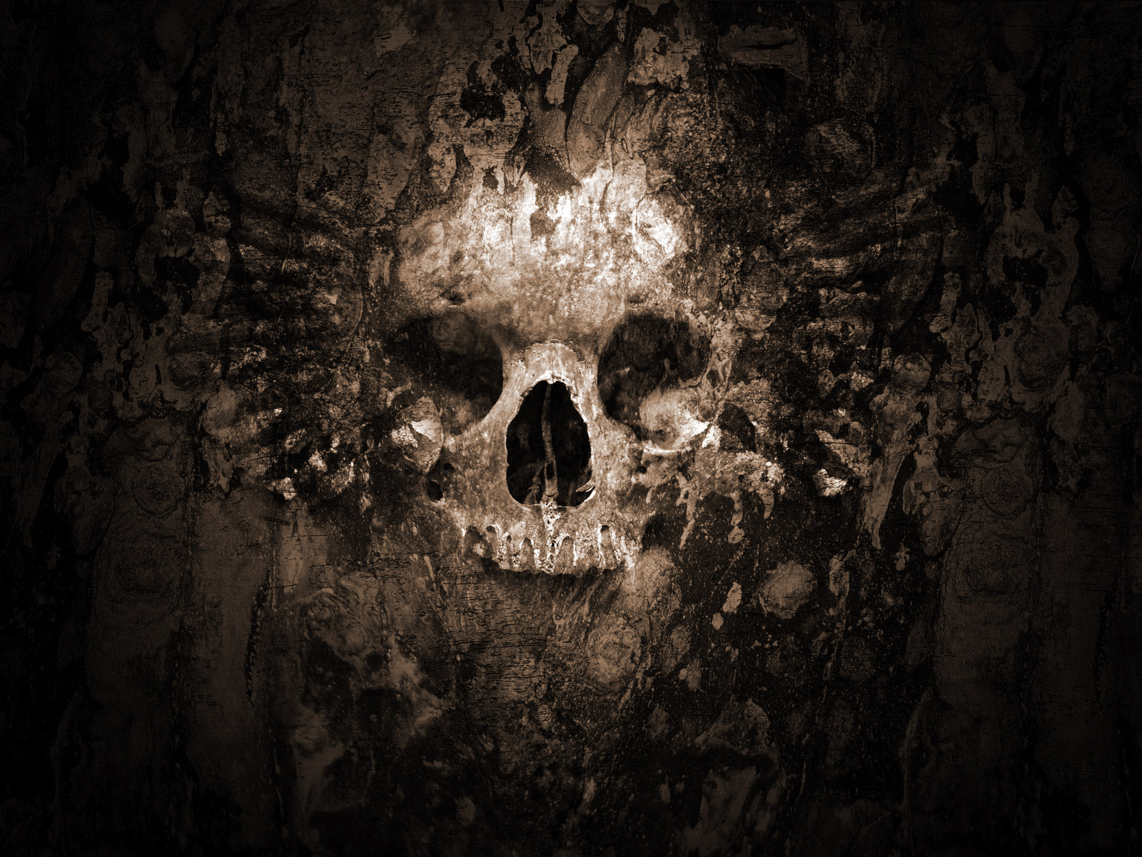 Here we have some cool skull wallpapers for your desktop computer background