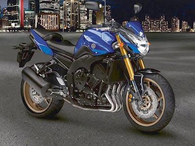 2010 Yamaha FZ8 Modification
