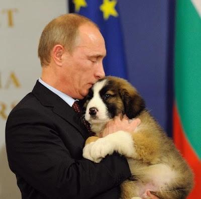 Vladimir Putin Cuddles With A Puppy Seen On  www.coolpicturegallery.us