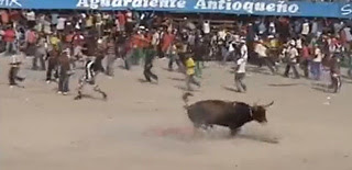 Onlookers jump in the bull ring
