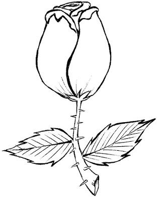 Flores. Belos riscos de flores para panos de prato. Desenho infantil para colorir