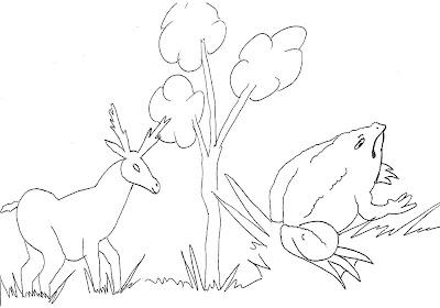 Animais Para Colorir  Natureza  Desenhos Para Pintar E Divers  O