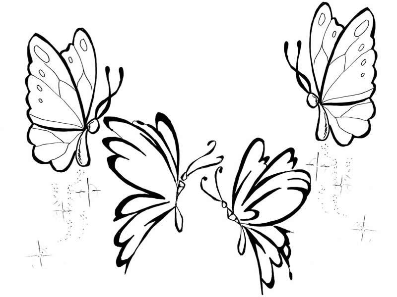borboletas+para+colorir+desenho+de+borboleta+para+colorirjpg